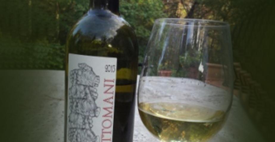 Ottomani Winery Impruneta